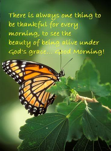 Good-Morning-Quote..thankful-